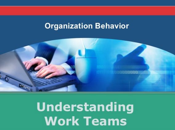 list the various reasons in organization xyz which lead to its development In the past, leadership development was focused on only a few individuals in the organization first-generation systems to assist with leadership development were siloed and/or hard to use and were not widely adopted.
